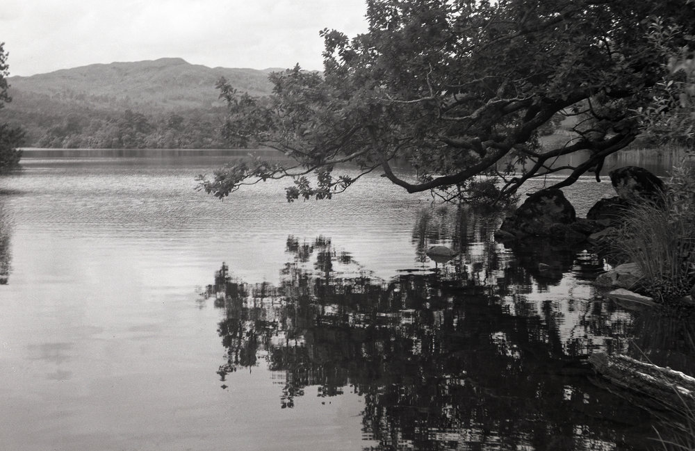 "Rydal Water in Autumn, 2016, taken on Ilford HP5 film with a 1920s Contessa-Nettel ""Cocarette""."