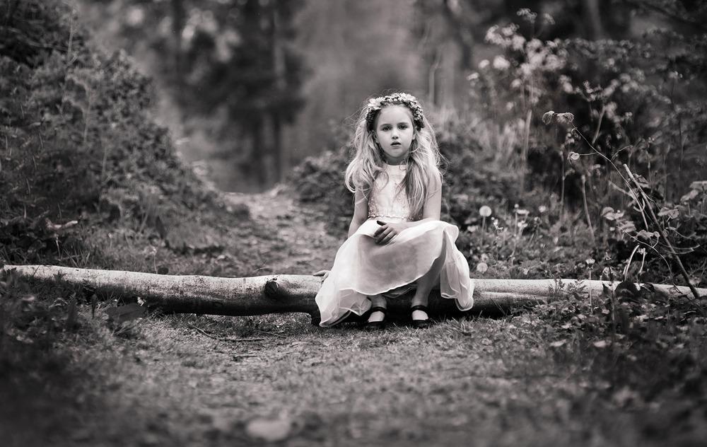 Karen McCrea - Woodland