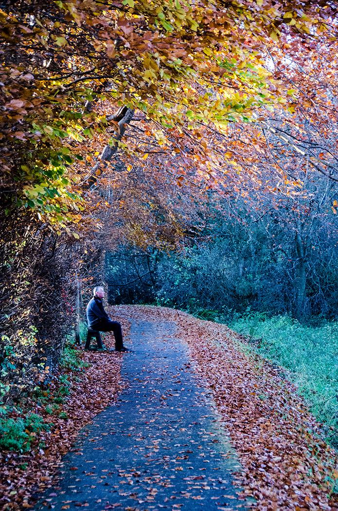 Autumn Pose