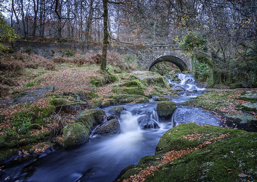 Autumn River (L).jpg