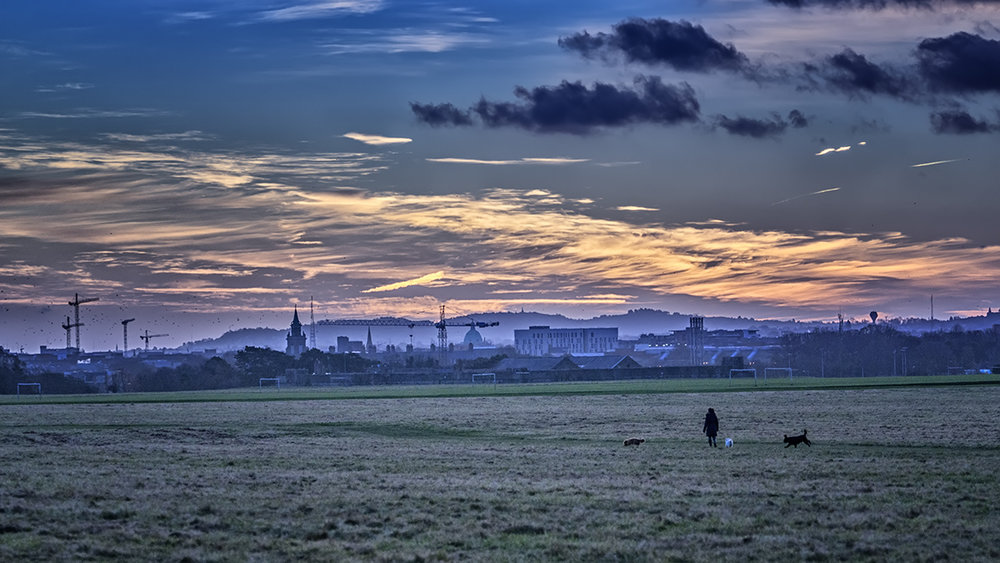 Morning Walk.jpg