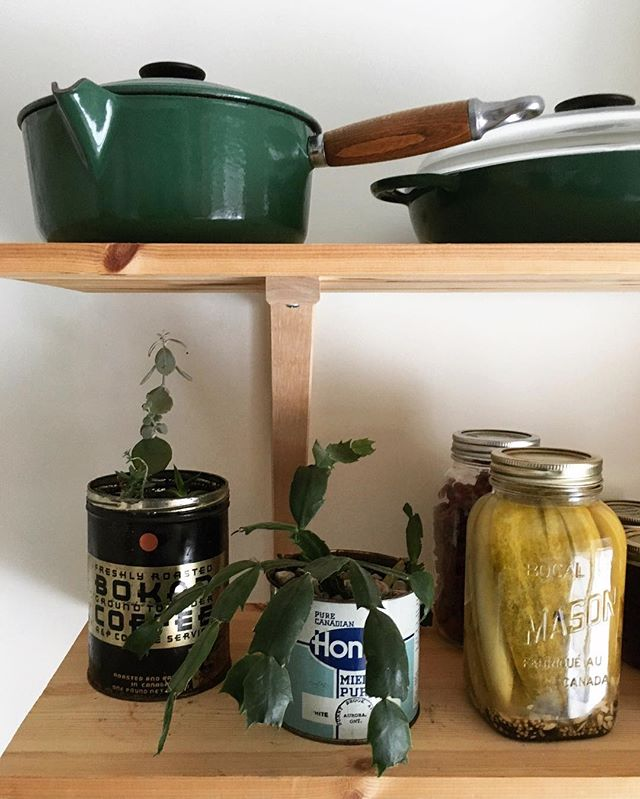 pots, pickles and plants