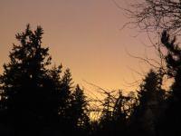 Picture of Orange Sunset