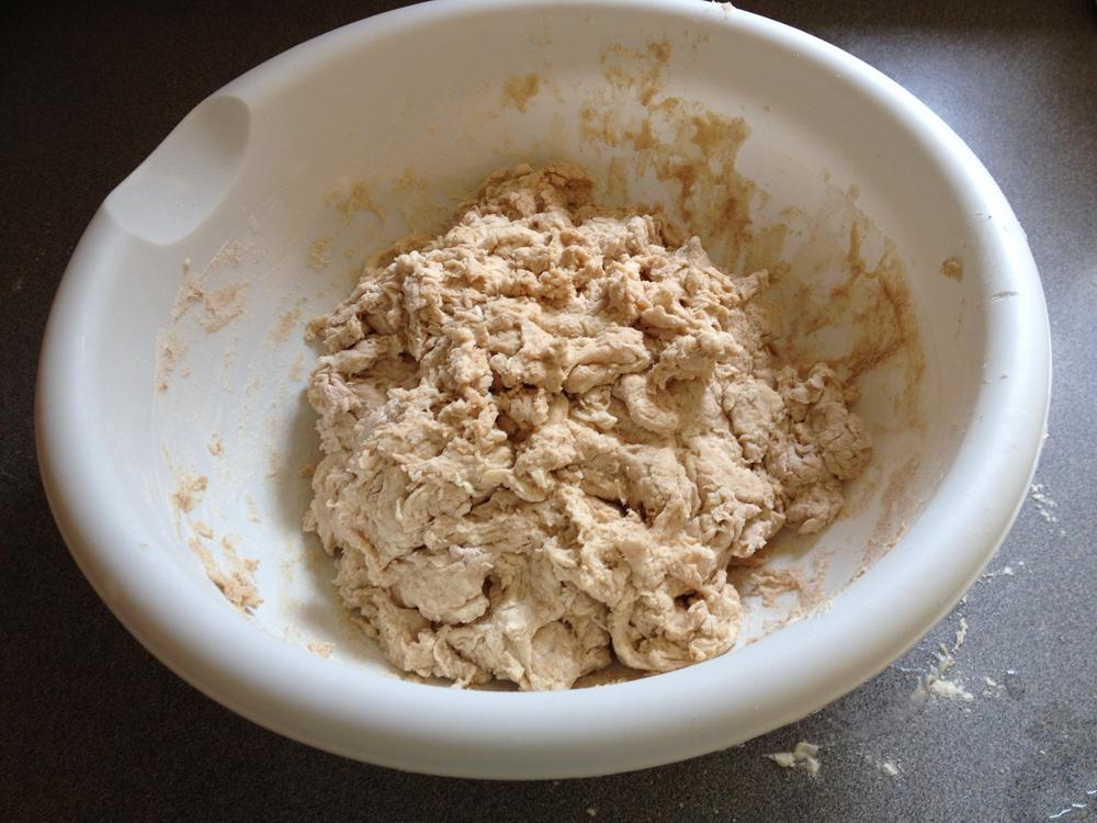 A shaggy dough