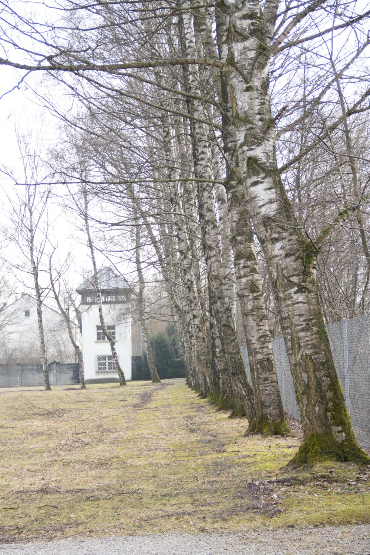 Dachau2.jpg