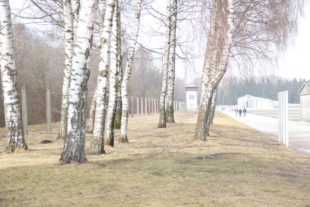 Dachau3.jpg