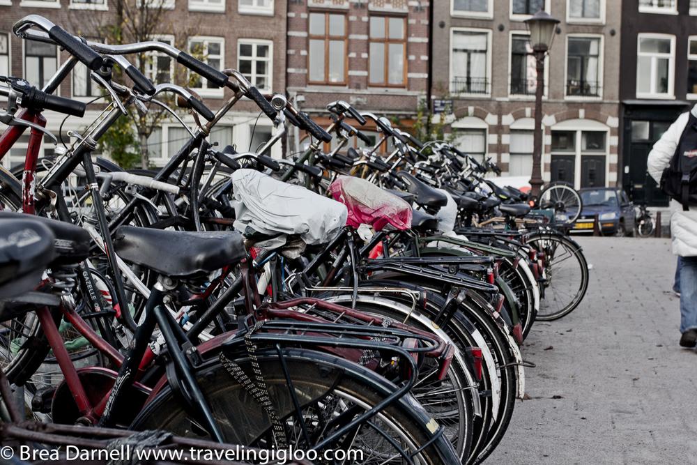 amsterdam-201211162909.jpg