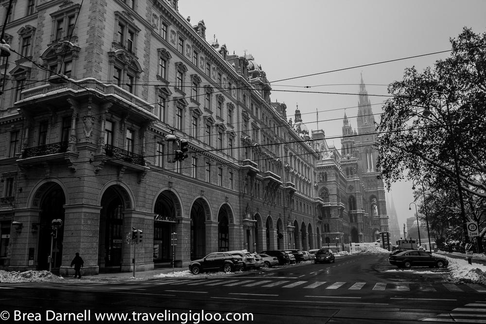 Vienna-2013 (2 of 19).jpg