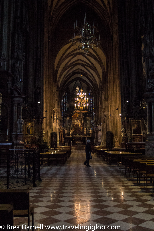Vienna-2013 (30 of 12).jpg