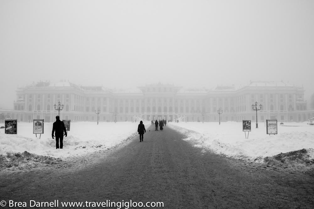 Vienna-2013 (6 of 19).jpg