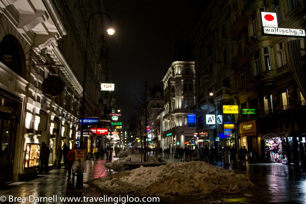 Vienna-2013 (18 of 19).jpg