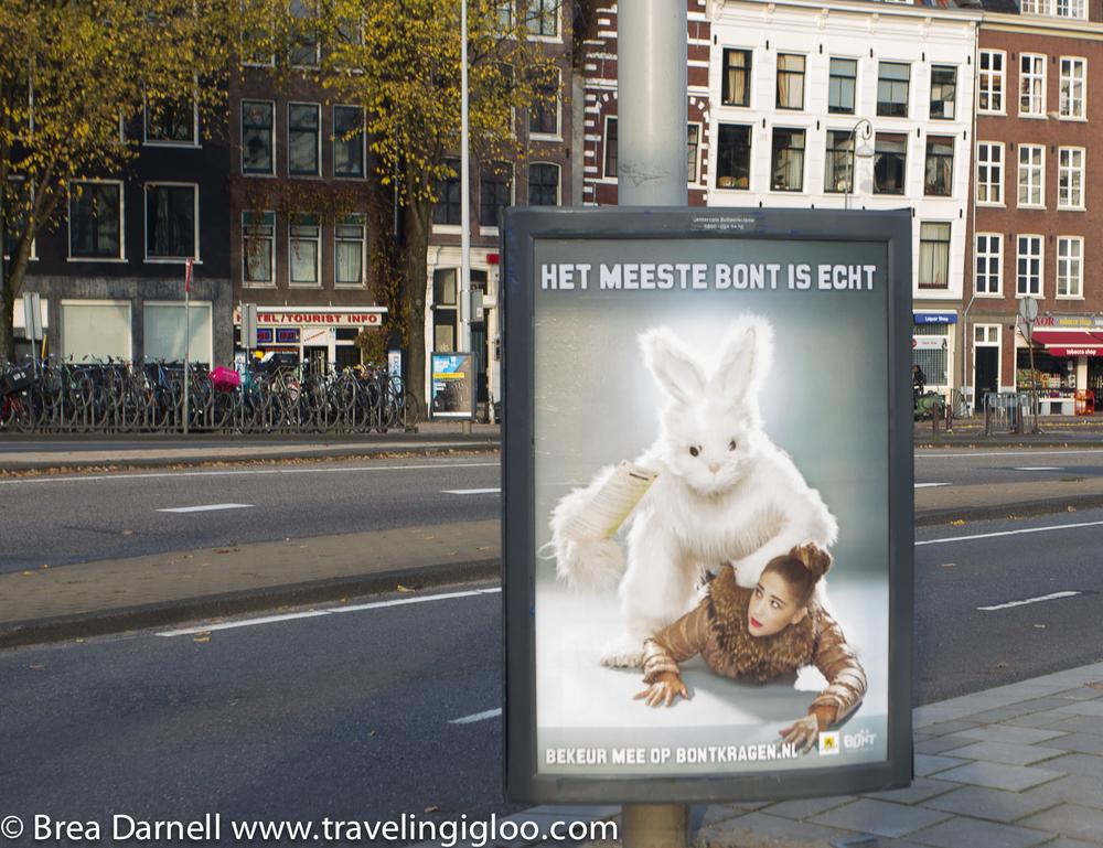 amsterdam-201211162906.jpg