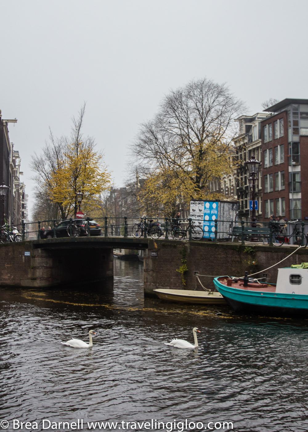 amsterdam-201211162988.jpg