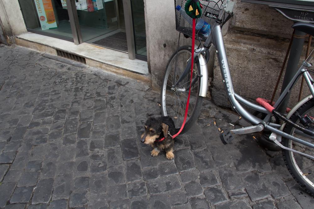 Rome8-143.jpg