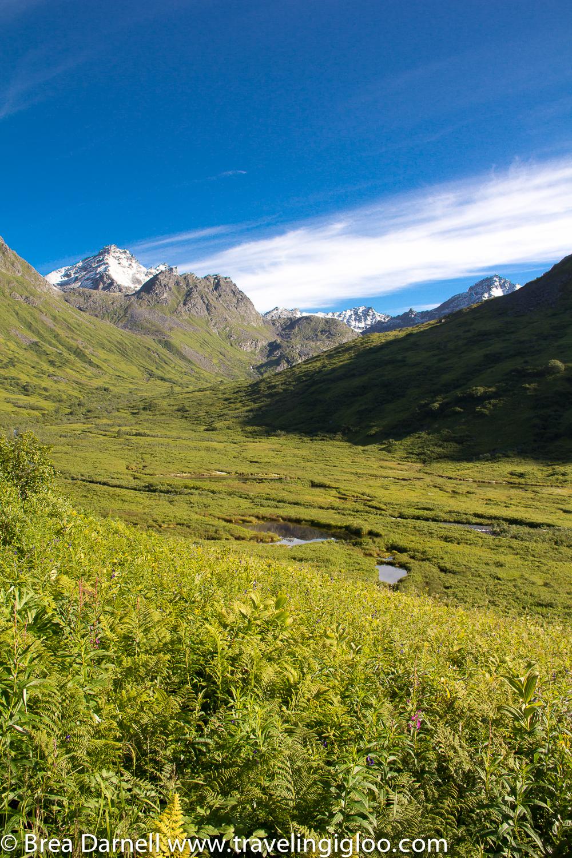 Alaska-Vacation-2011-8.jpg