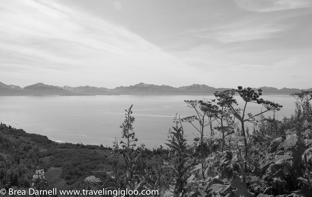 Alaska-Vacation-2011-16.jpg
