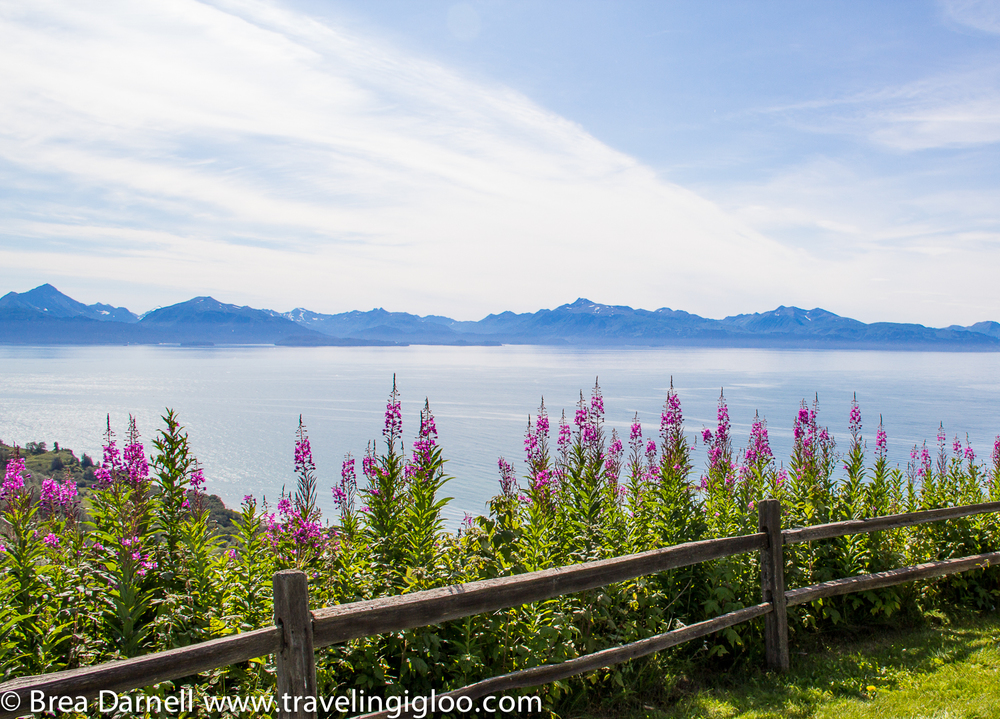 Alaska-Vacation-2011-17.jpg