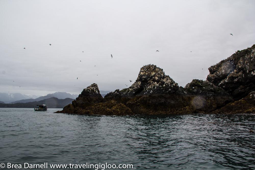 Alaska-Vacation-2011-25.jpg