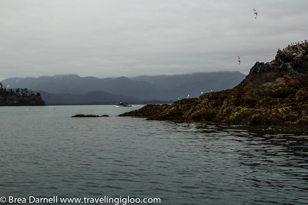 Alaska-Vacation-2011-26.jpg