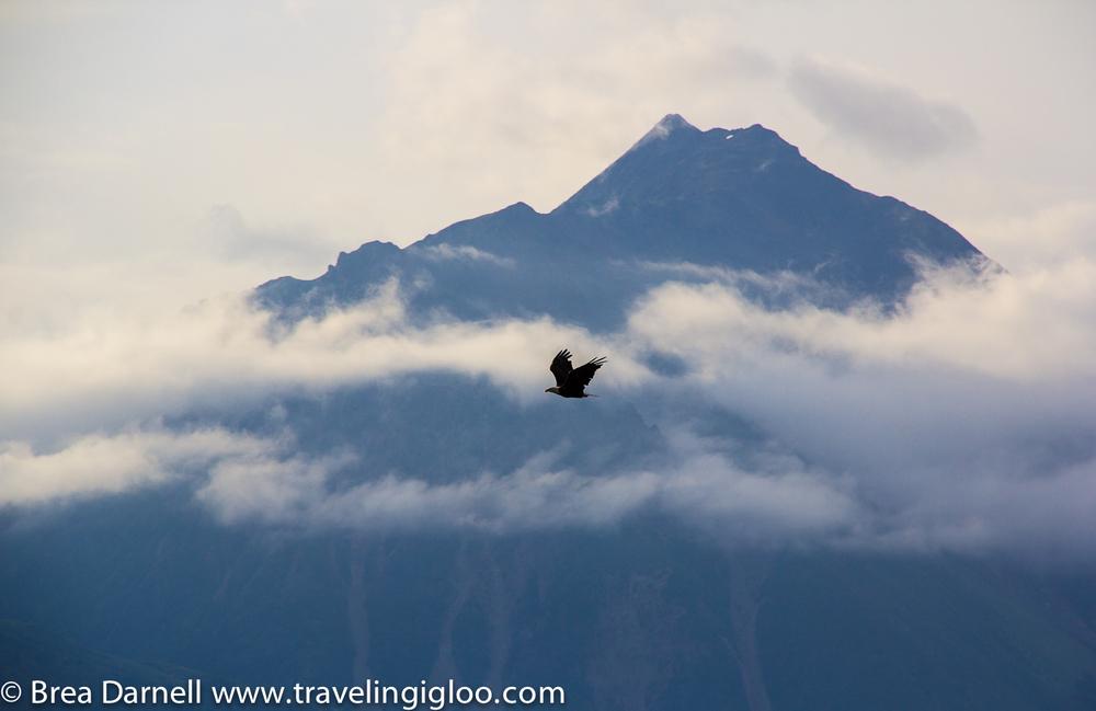 Alaska-Vacation-2011-32.jpg