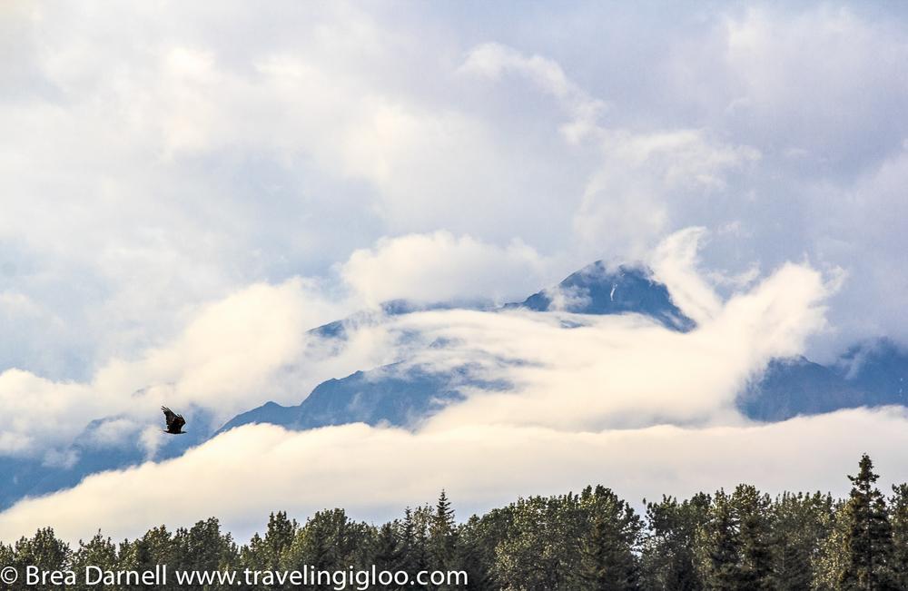 My Home - Alaska