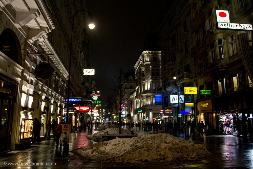 Vienna-Austria67.jpg