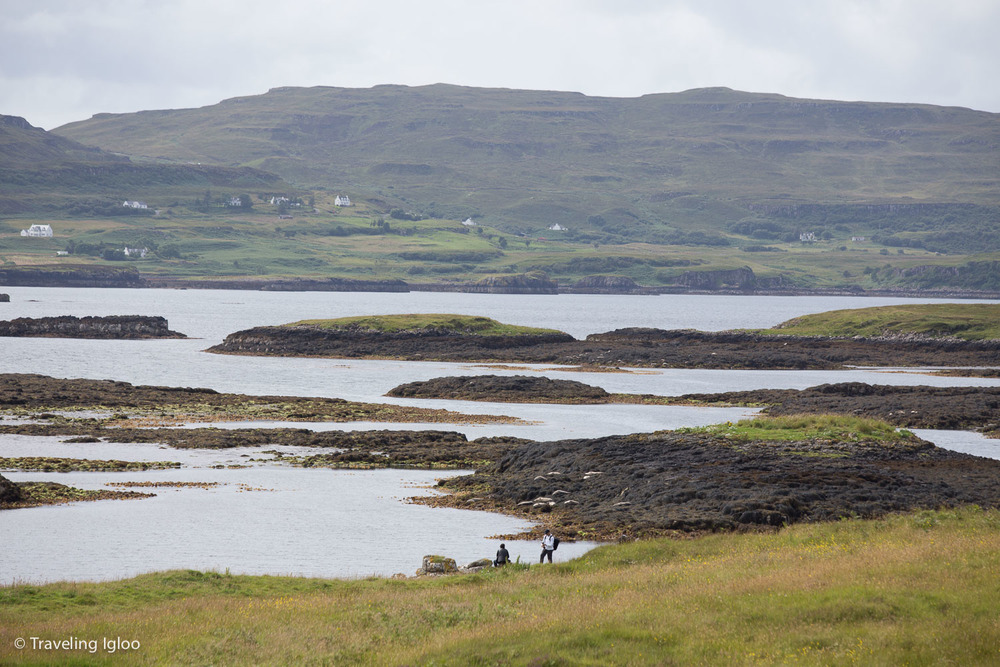 Scotland3.jpg