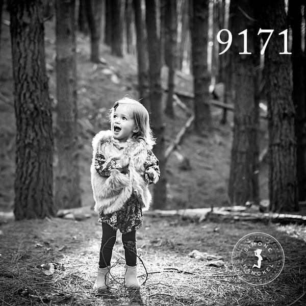 SHP_9171.jpg
