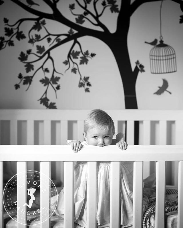 Miss Scarlett! A sneak peek for Kelly and Mark ❤️ #simonehanckel #adelaidephotographer #blackandwhitephotography