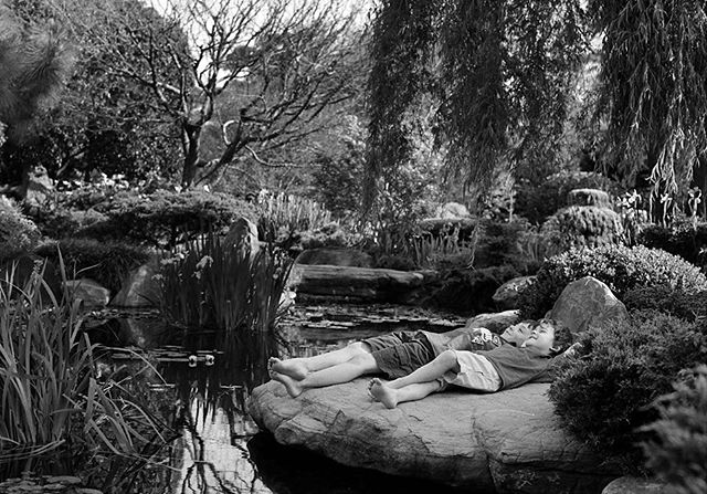 An oldie but SUCH a goodie. This photo of my sons was taken when they were 7 and 4, in the stunning Himeji Garden, Adelaide. I'd asked the little rotters to sit on the Rock and dangle their legs over, but of course it was much funnier to ignore me and do their own thing. What's really special about this is that little bit of co-conspiracy going on between them. Their close relationship is so evident and makes me so proud. I love how they love each other ❤️ #adelaidephotographer #simonehanckel #blackandwhitephotography #familyphotographyadelaide #himejigardenadelaide #nawwwwmybabies #agfaapx400 #filmdays