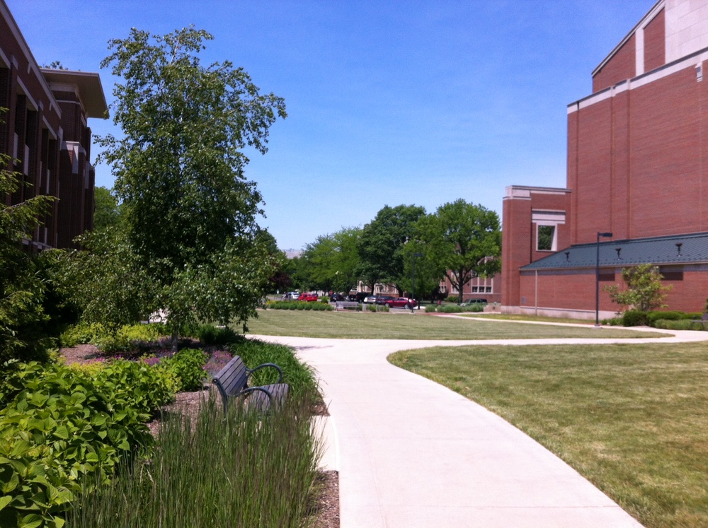 The beautiful greenery outside the BSU music instruction building!