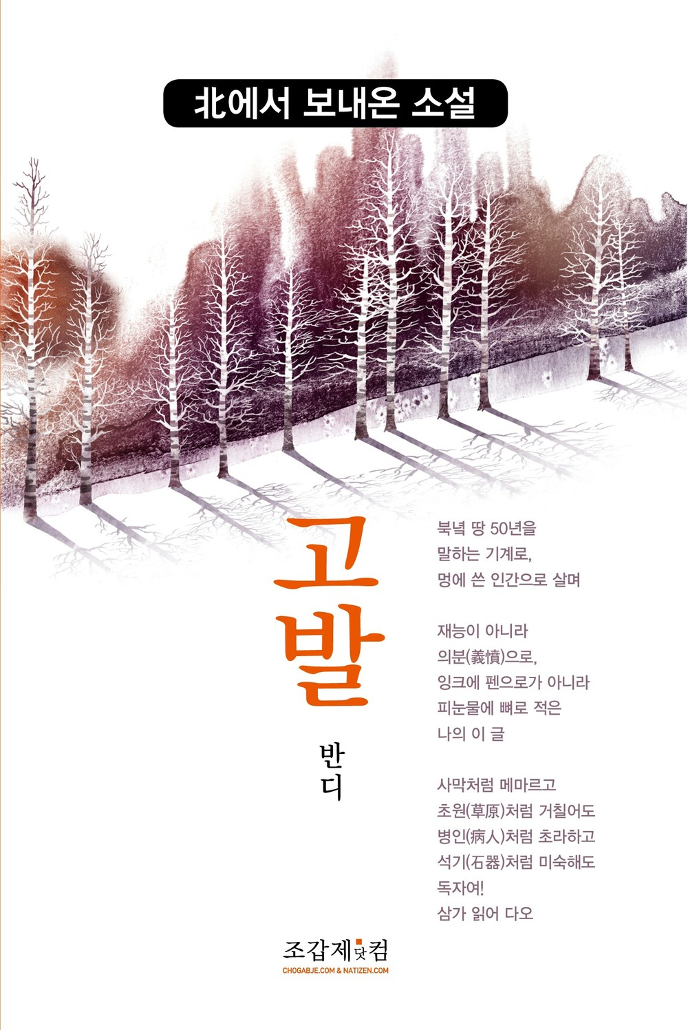 Bandi_The Accusation_Korean Cover_KL.jpg