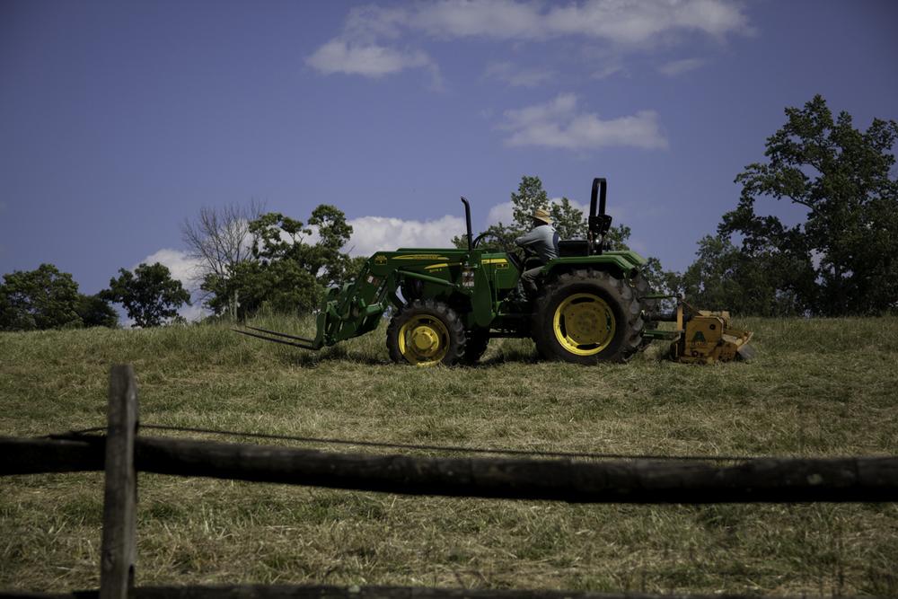 farmjpgs-10.jpg