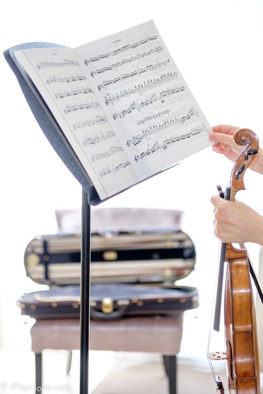 violin-stand