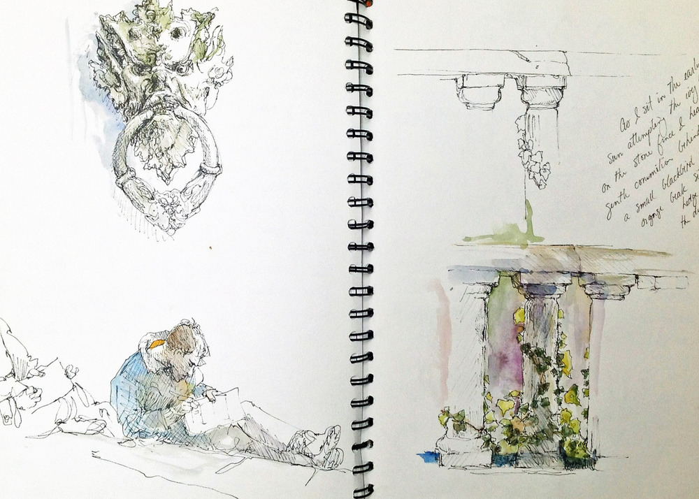 watercolor + sketchings: Suzanne Northcott