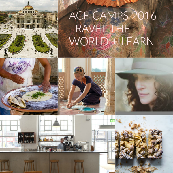 ace announce 2016 BLOG.png