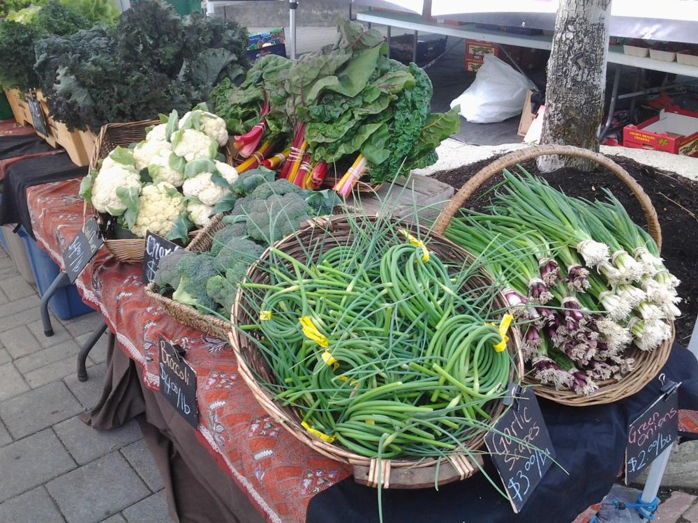 rootdownfarm farmers market.jpg