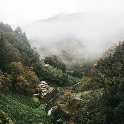 FUJINO, JAPAN - A masterclass in Shibori stitching and Indigo dyeing in the mountains of Japan