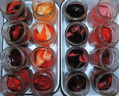 Dye Jars-DeConick.jpg