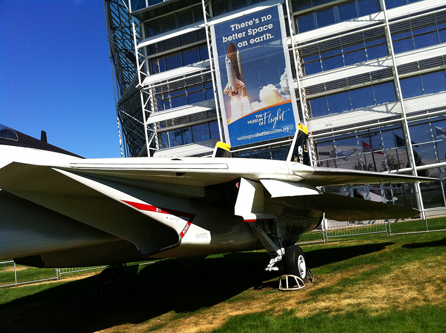 f-14 tomcat (3).png