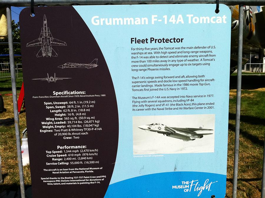 f-14 tomcat (13).png