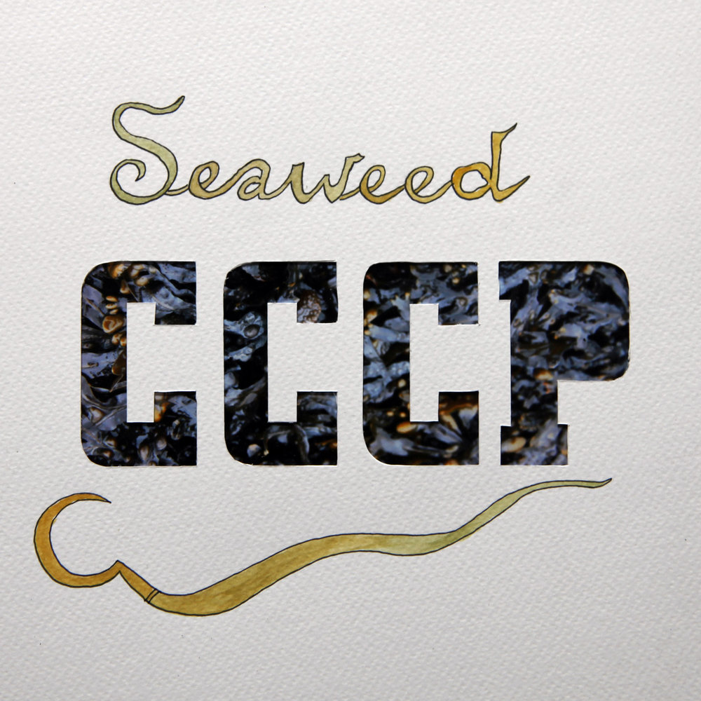 3.seaweedCCCP.jpg