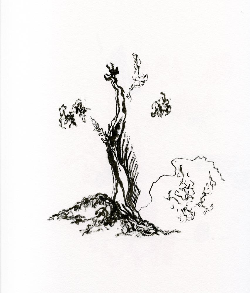 draw007.jpg