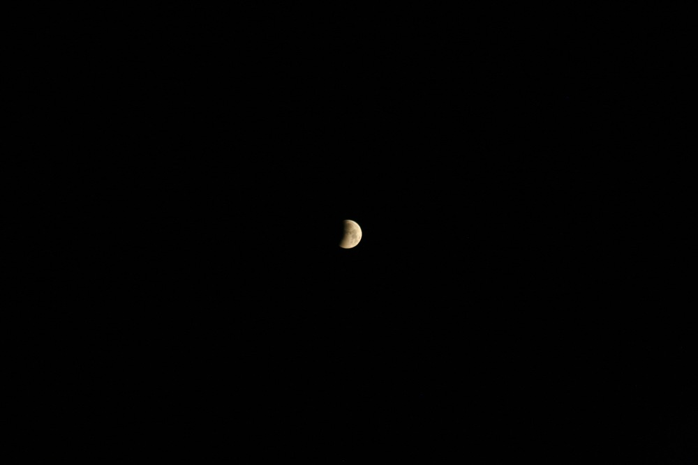 Lunar Eclipse April 20151.jpg