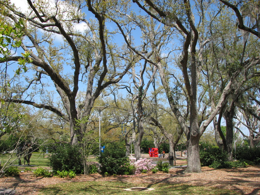Botanical Gardens 2.JPG