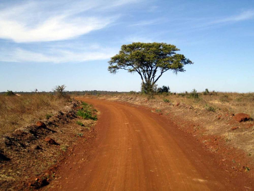Nairobipark2.jpg