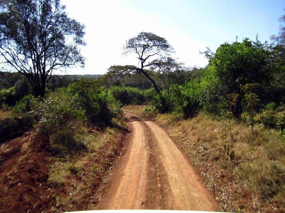 NairobiPark.jpg