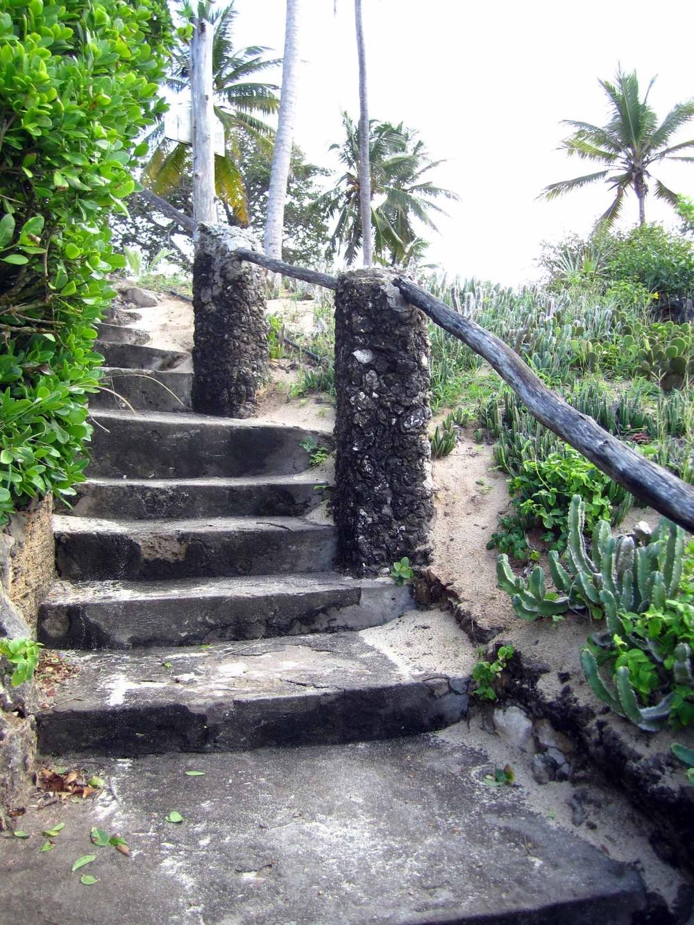 Hillparksteps2.jpg