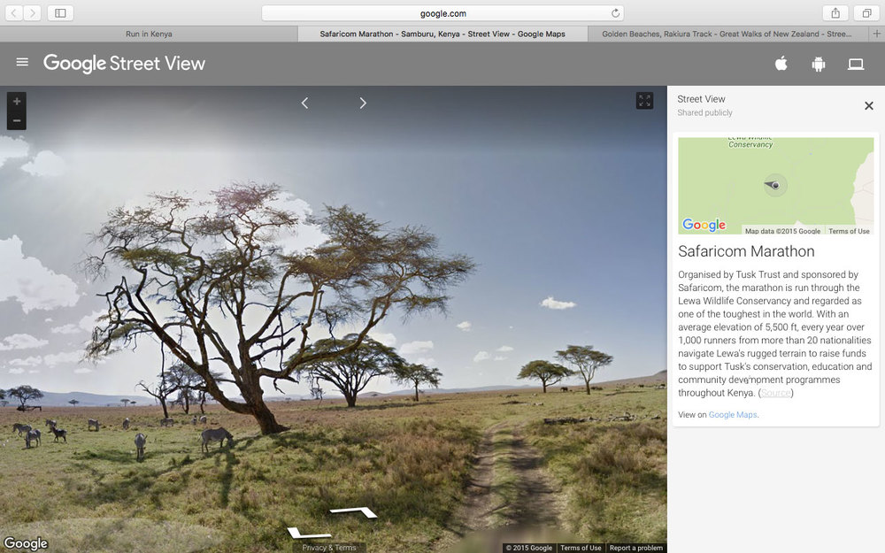 Google_street_view.jpg
