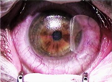 theartistseye.jpg